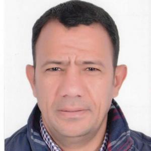 Mohamed Zeeneldin - Tour Guide