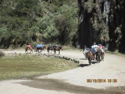 Salkantay & Machupicchu Trek