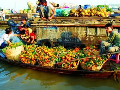Saigon - My Tho - Mekong Delta - Dalat - Nha Trang