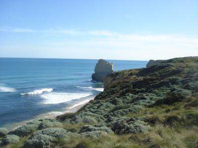 Byron Bay Coastal Tour