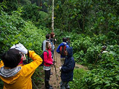 9-Day Explore Rwanda