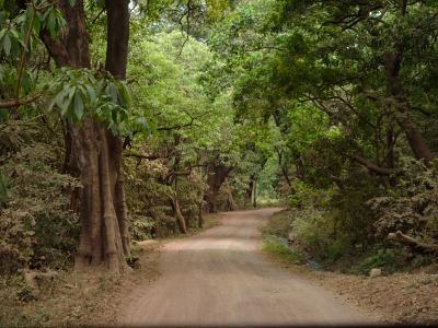9 DAYS MASAI MARA - LAKE MANYARA - NGORONGORO- SERENGETI