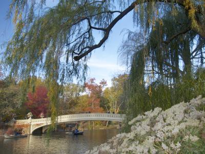 Central Park Secrets & Highlights Tour